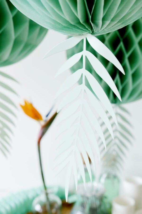 decoratieve bladeren groen blauw delight department