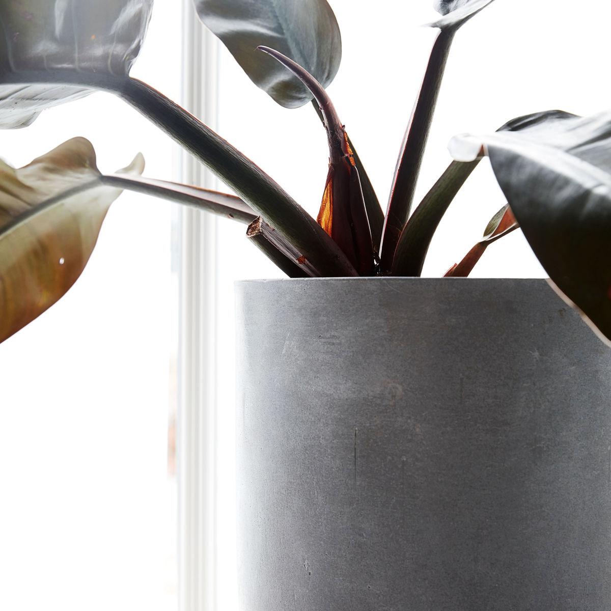 Bekend House Doctor plantenpot beton large, stoer voor binnen of buiten YP51