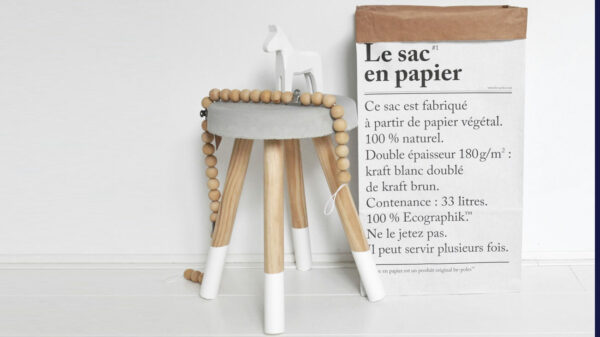 le sac en papier/the paper bag