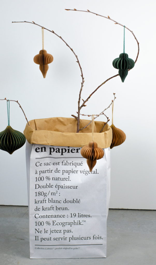 papieren zak plant decoratie