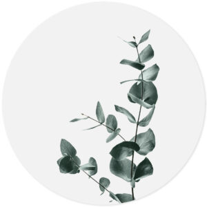 Muursticker Eucalyptus
