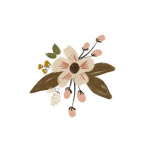 Huis van mijn kaart bloem krijt